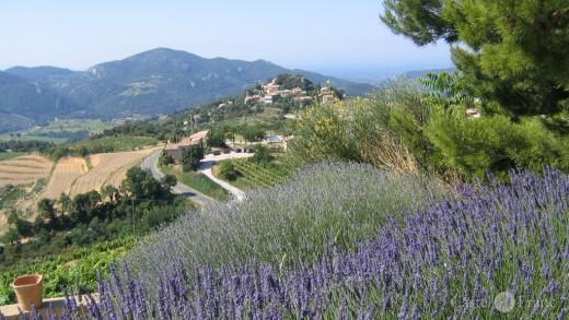 Blick auf die Dentelles du Montmirail vom Weingut Saint Martin, Suzette, France