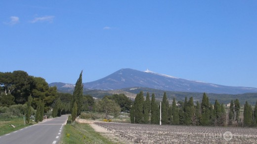 Blick auf den Mont Ventoux von Vacqueyras, bei den Dentelles de Montmirail