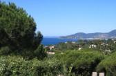 Blick auf die Côte d'Azur bei Ramatuelle über Pinien