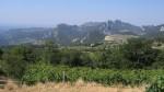 Blick auf die Dentelles de Montmirail von: ??? /see by: Castel Franc Tourgu